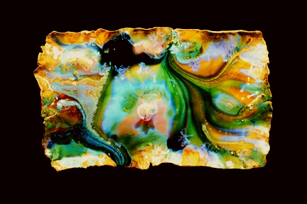 Inside Abalone 13x22x4 in